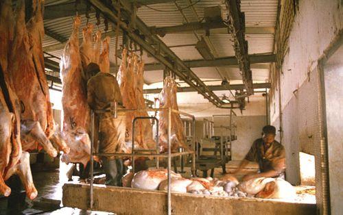 La surconsommation de viande passée sous silence