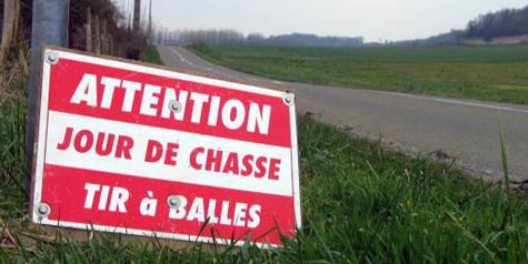 Accidents de Chasse en France : saison 2011-2012