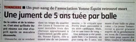 Une jument tuée par balle dans l'Yonne