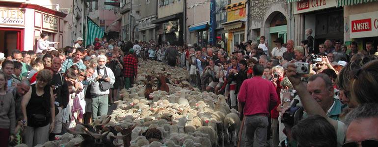 La fête de la transhumance à Die, dans la Drôme.