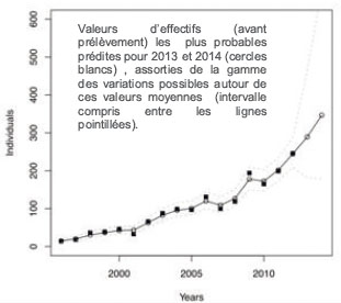 Modele effictifs population loups en France