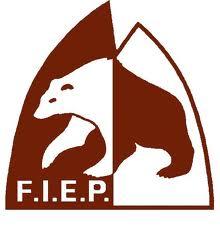 Logo-fiep