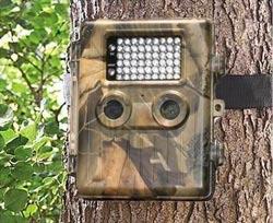 Camera-faune