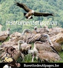 Instrumentalisation des vautours