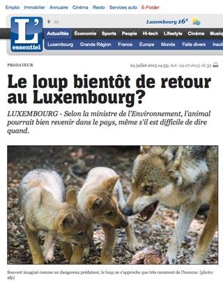 Le loup bientôt de retour au Luxembourg?