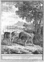 Loup_chien_1